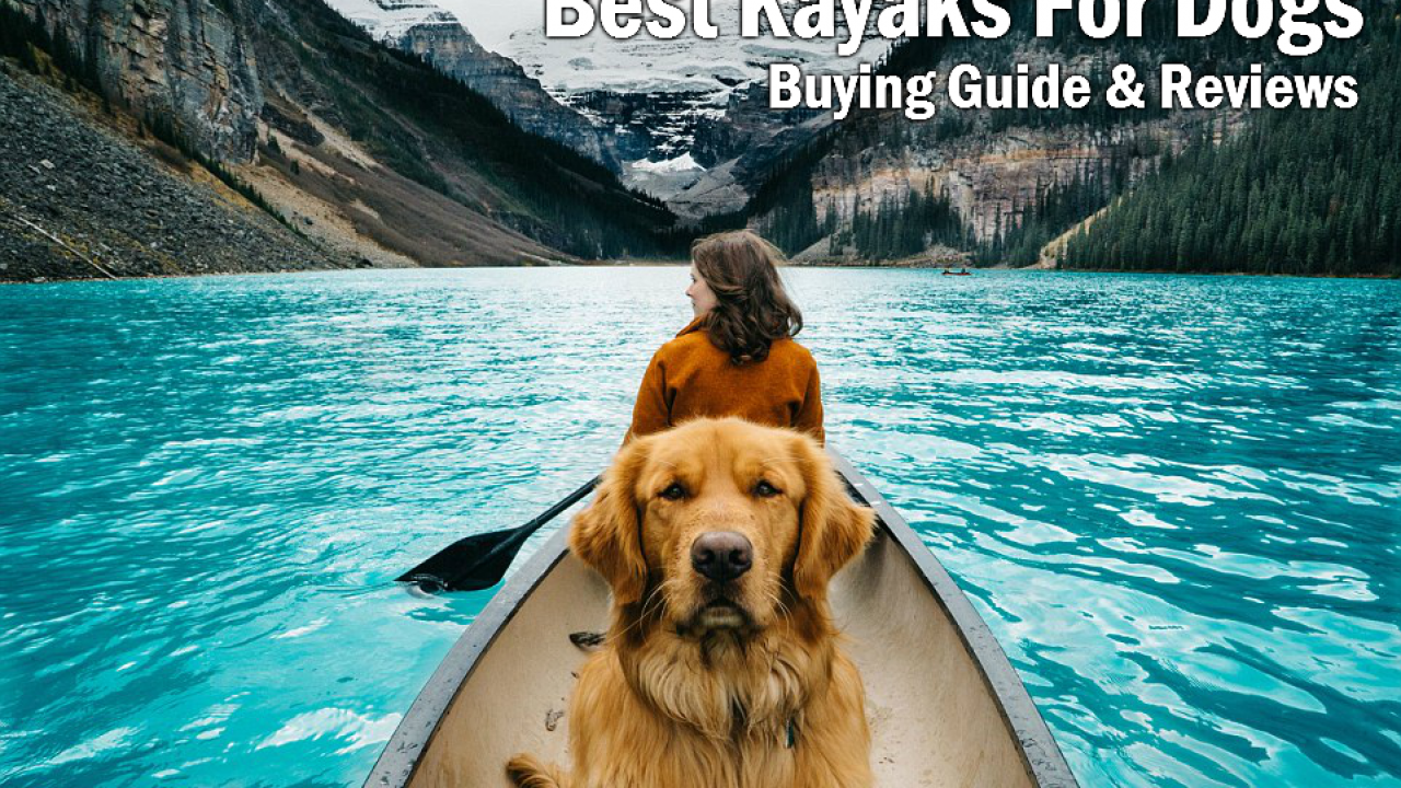5 Best Kayaks For Dogs in 2018 | Kayaking With Your Dog