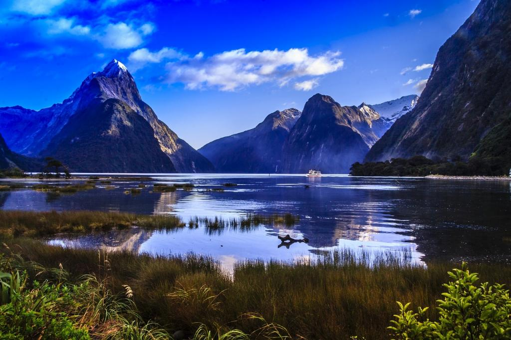 kayaking destinations milford sound